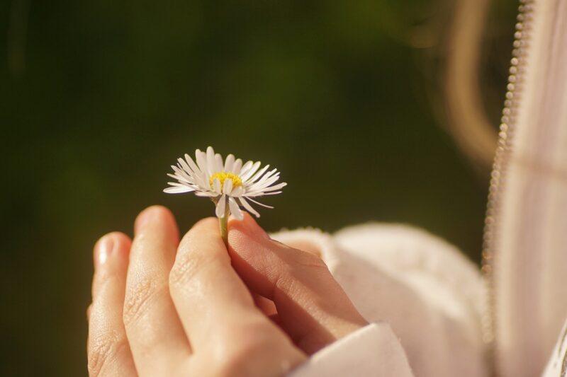 花を持つ子どもの手